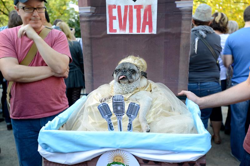 tompkins square halloween dog parade evita