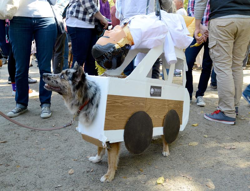tompkins square halloween dog parade revenge of seamus
