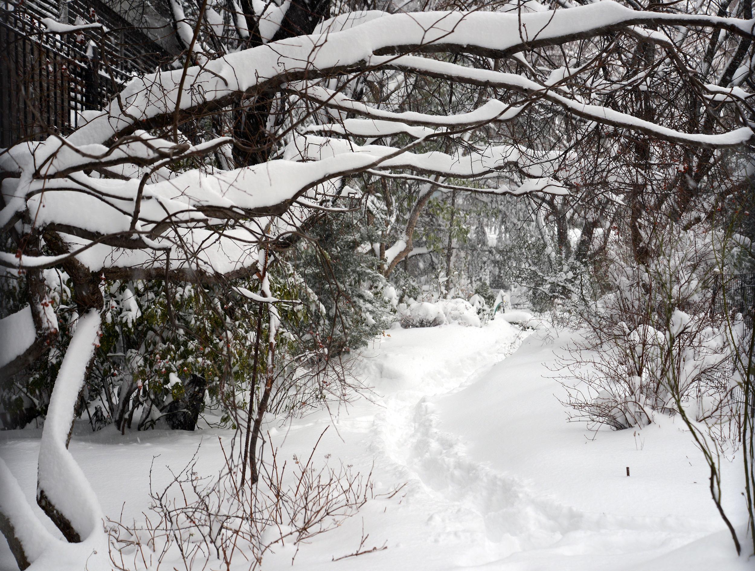 manhattan-blizzard-50